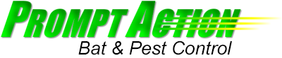 Prompt Action Pest Control in Minocqua WI
